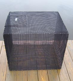 "Rectangular Live Bait Fish Holding Cage by Black Pearl 24""x 24""x 28"""